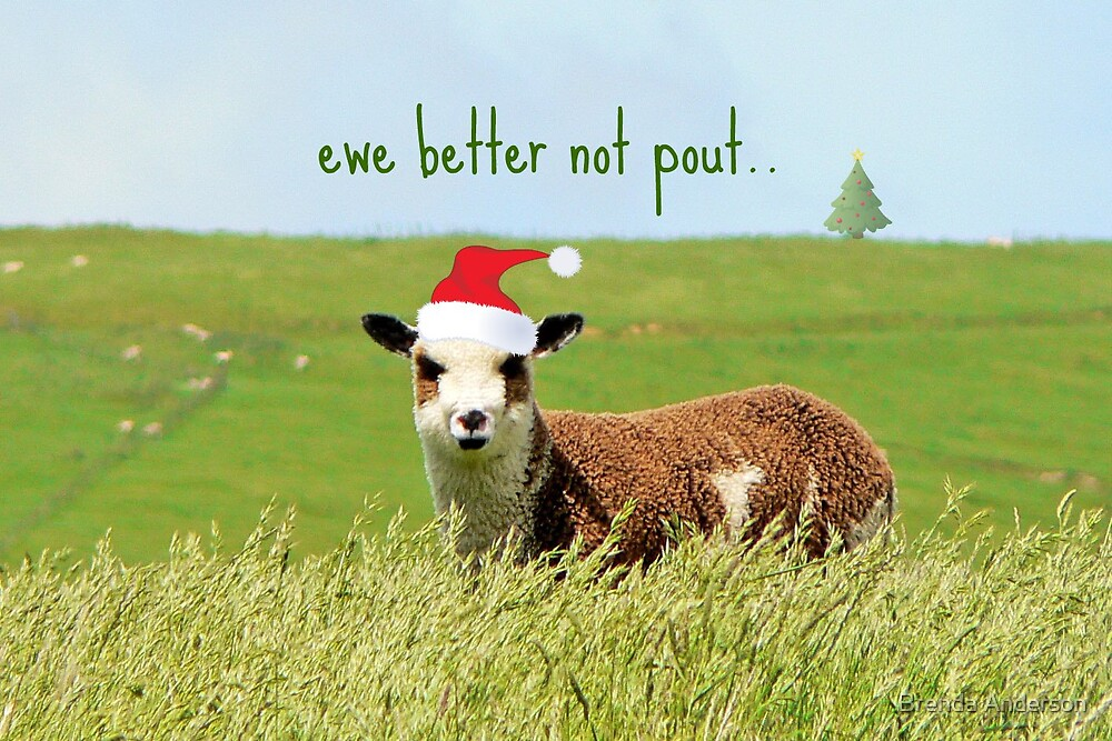 ewe better not pout.. by Brenda Anderson