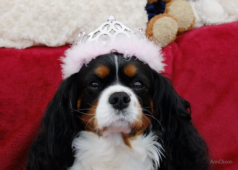 Princess Charlotte Rose by AnnDixon