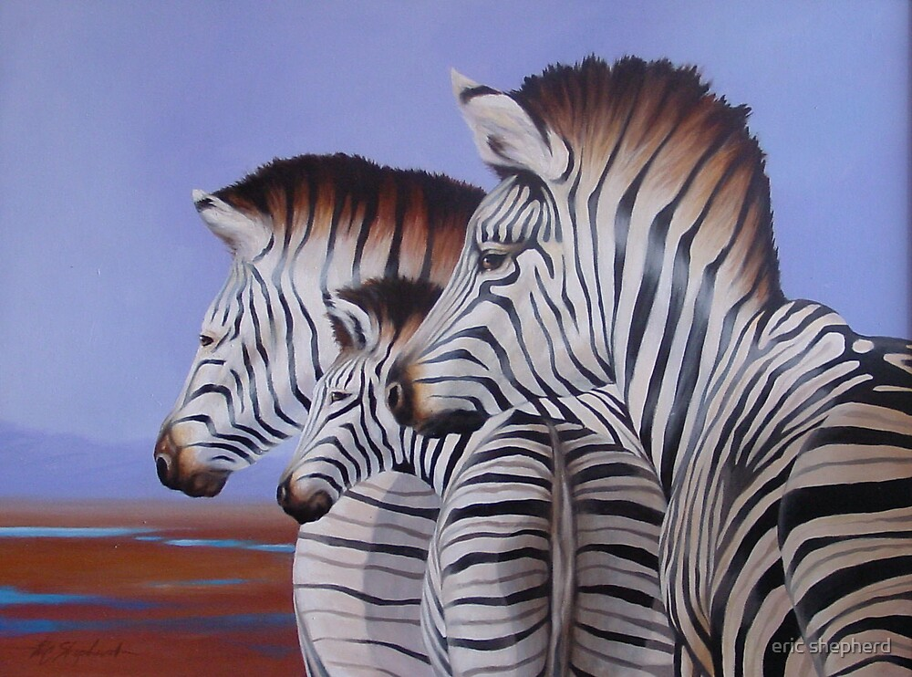 Zebra Crossing by eric shepherd