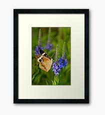Spring II Framed Print