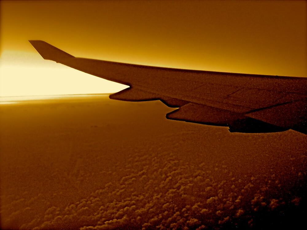 Wings On Fire by diongillard