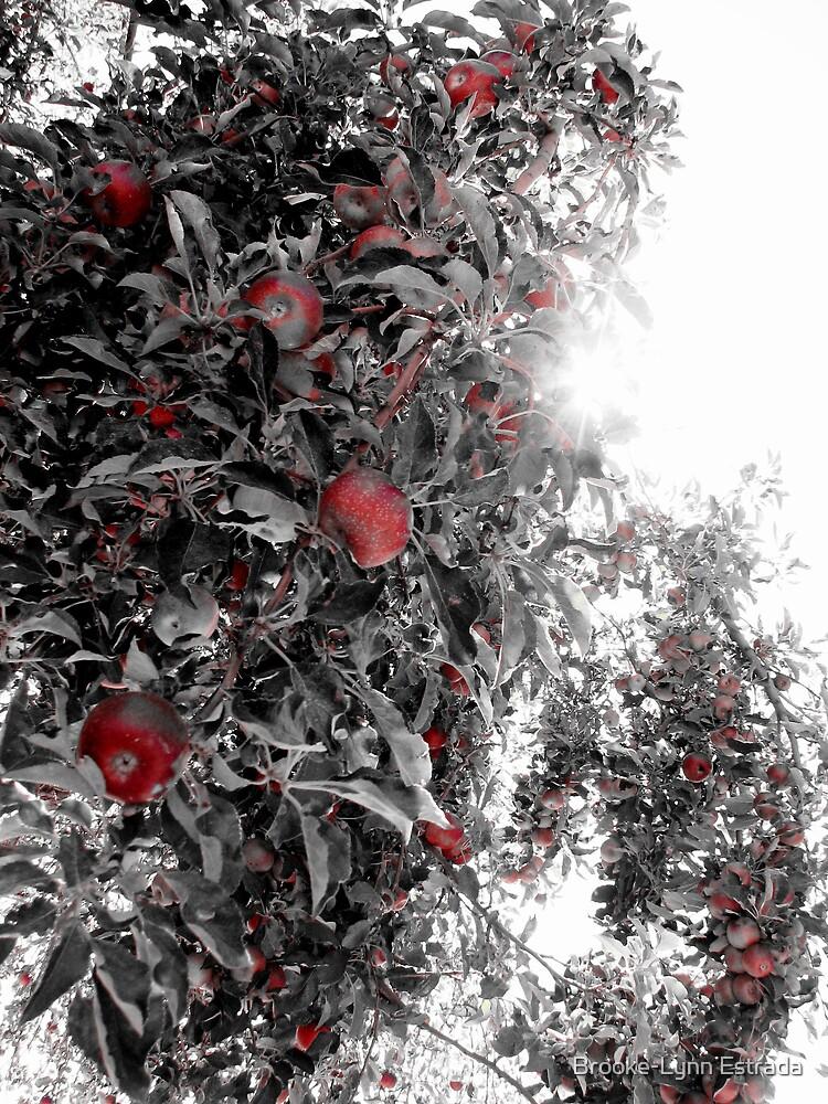 The Apple Orchard by Brooke-Lynn Estrada