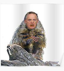 Spicehog Poster