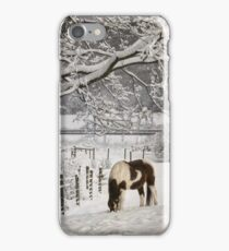 Paint in the Snow iPhone Case/Skin