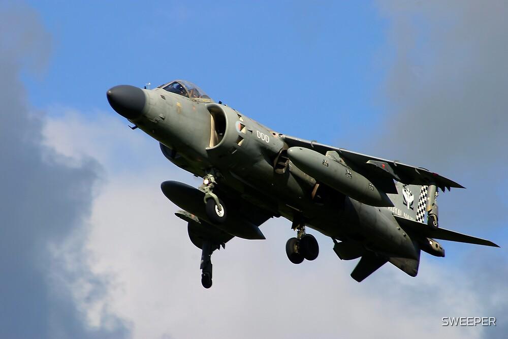 Harrier Jump Jet  by SWEEPER