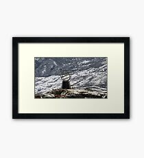 Crossing into the Arctic Circle -  66º, 30'N latitude Framed Print