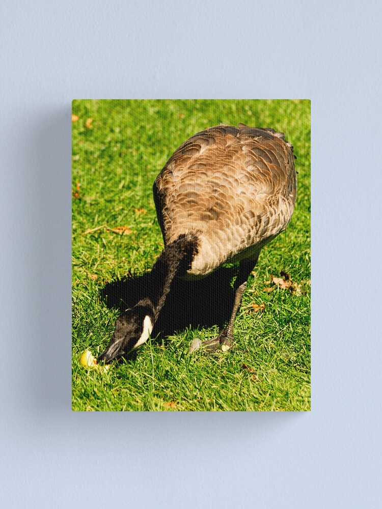 Alternate view of A bite from the Apple Canvas Print