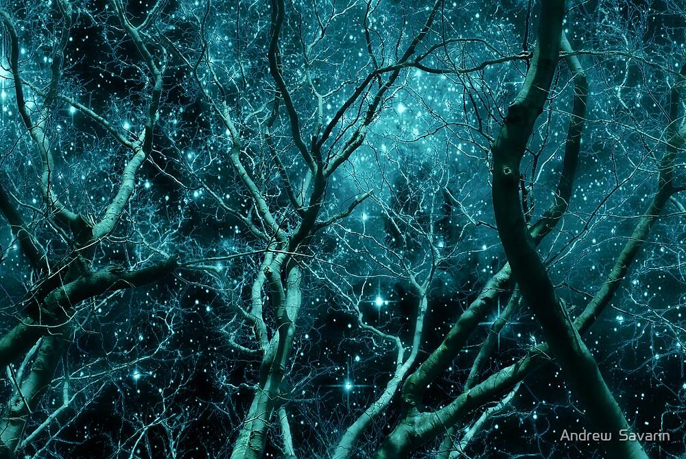 Starry Night by Andrew  Savarin