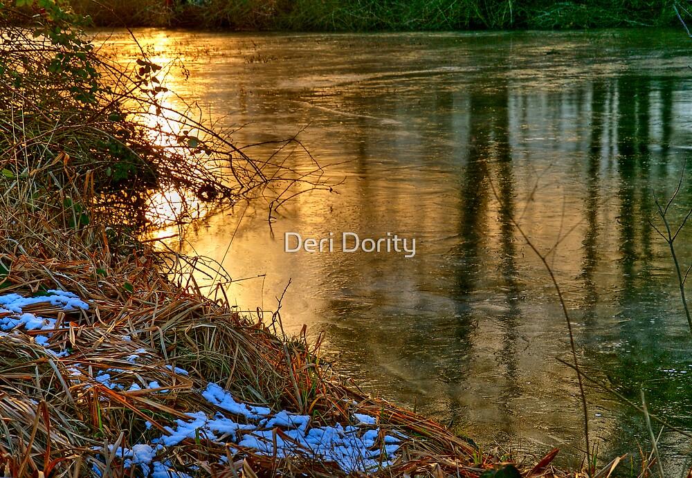 The Freeze by Deri Dority