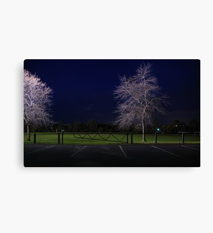 You Will Be Tripped Up By People When your Resolution Is Lax Canvas Print
