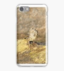 """"""" Rock Pipit Shadow """" iPhone Case/Skin"""