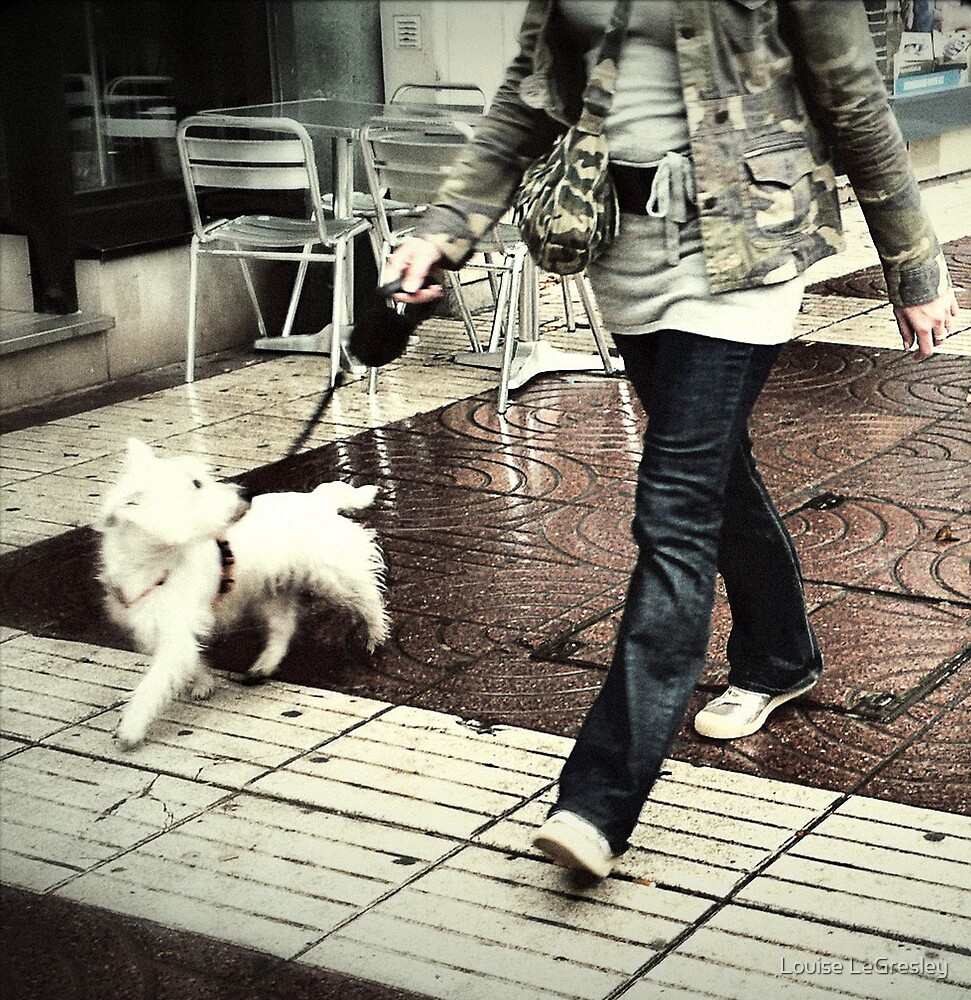 Walking the dog... by Louise LeGresley