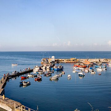 Ballycotton Harbour Co Cork  by webdoctor