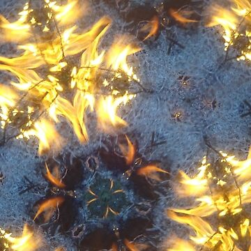 Fractal Fire Dances n°4 by edend
