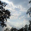 sky by nickwisner