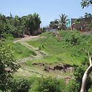 Hill in Honduras by nickwisner