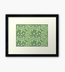 Piedras greenery Framed Print