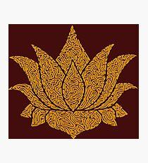 Lotus - Gold Photographic Print