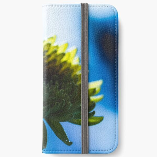 Holy iPhone Wallet