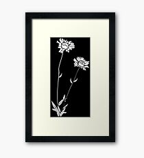 Wild Flower Framed Print