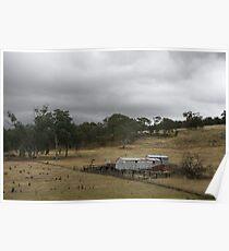 Wool Shed, Felltimber Creek Road, Wodonga, Victoria Poster