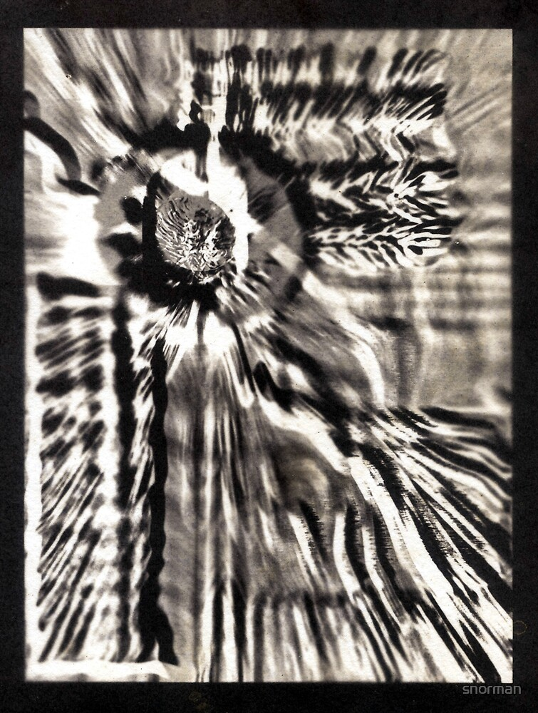 Abstract Salt Print by snorman