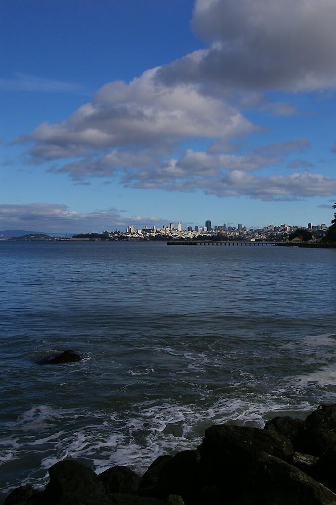 San Francisco Bay by Bloom