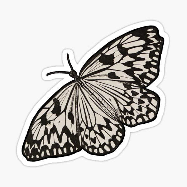 Butterfly - Sticker 1 Sticker