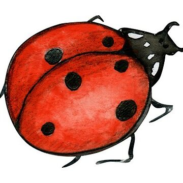 One little ladybird, watercolour painting by Mindreader