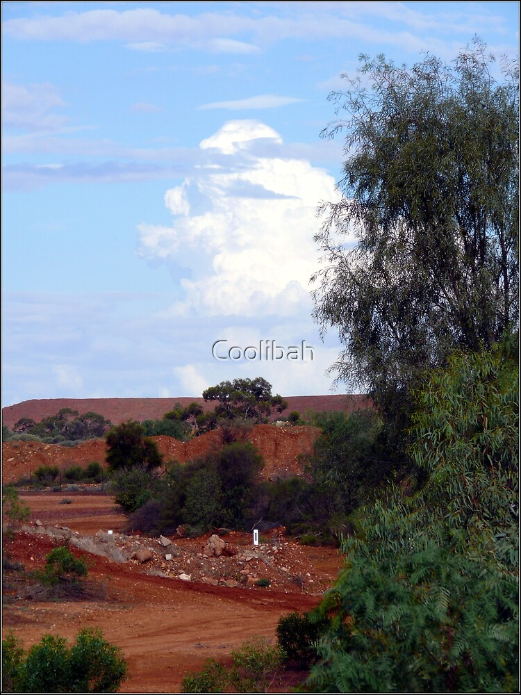 Colours of the Outback by Ruth Anne  Stevens