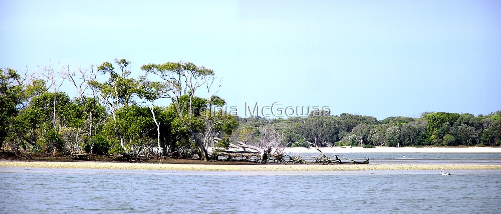 Broadwater Gold Coast by Virginia McGowan