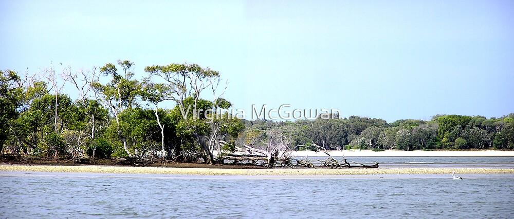 Broadwater Gold Coast by Virginia McGowan