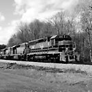 Springtime Train in Black and White by Rick Morgan
