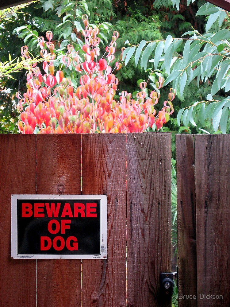 Beware of Dog by Bruce  Dickson
