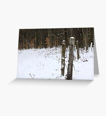 Forgotten Posts Greeting Card