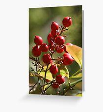 Berry Ripe Greeting Card