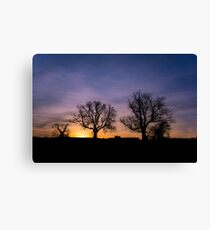 Mummy tree, daddy tree and baby tree! Canvas Print