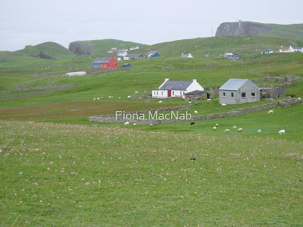 Fair Isle by Fiona MacNab