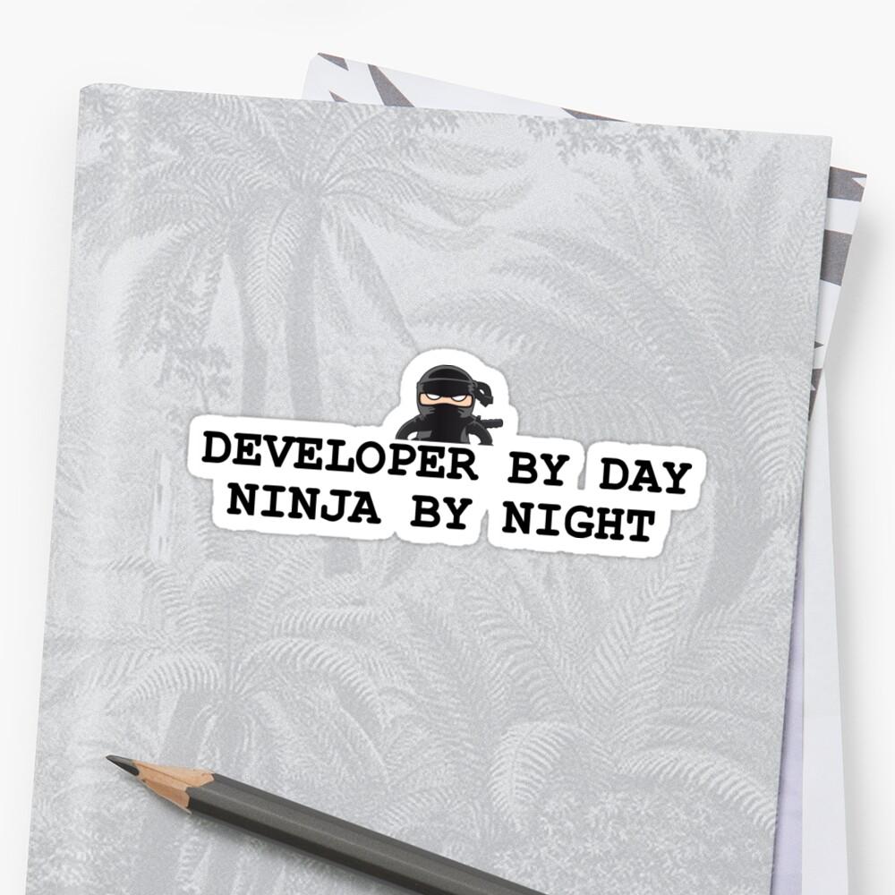 «ninja developer» de yourgeekside