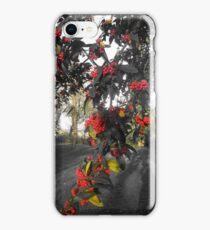 Fruitful Autumn iPhone Case/Skin