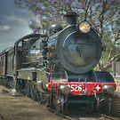 Engine No. 3526, NSW Rail Transport Museum by Clayton Haynes