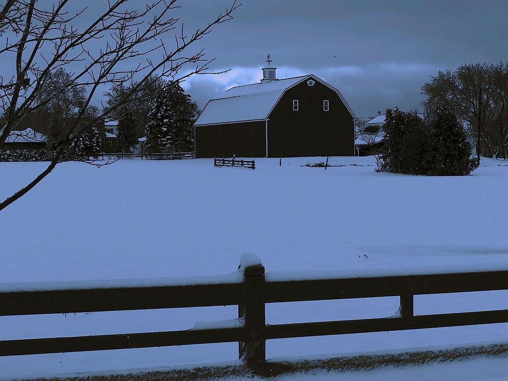 Barn In Blue by Gene Cyr