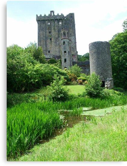 Blarney Castle by Margaret Zita Coughlan