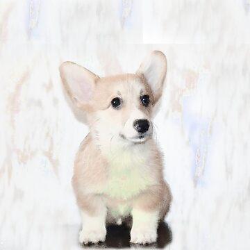 Welsh Corgi Puppy by ritmoboxers