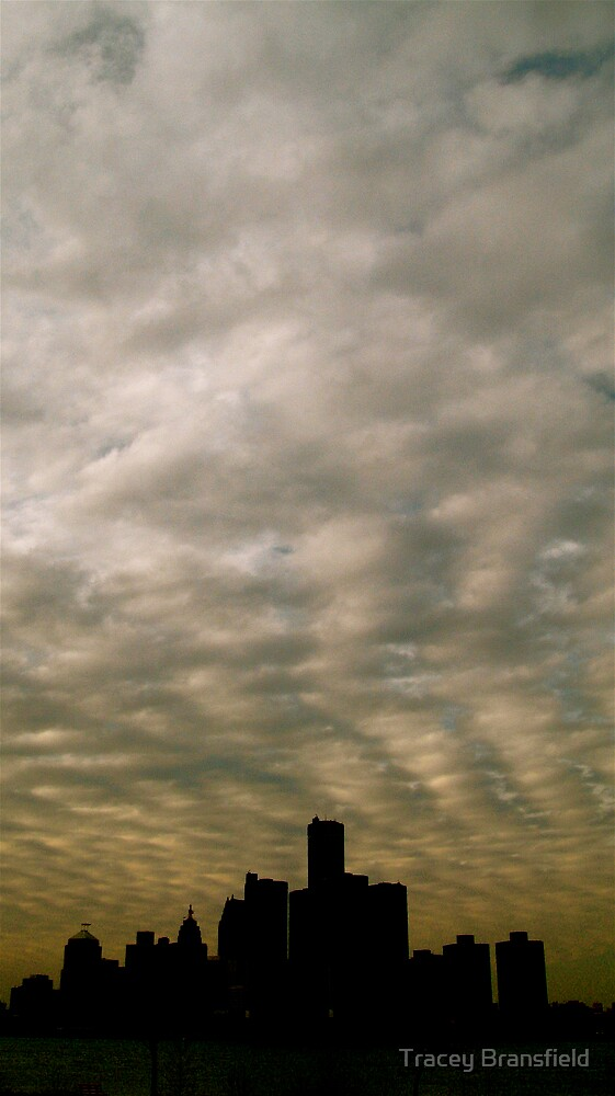Detroit Skyline by Tracey Bransfield