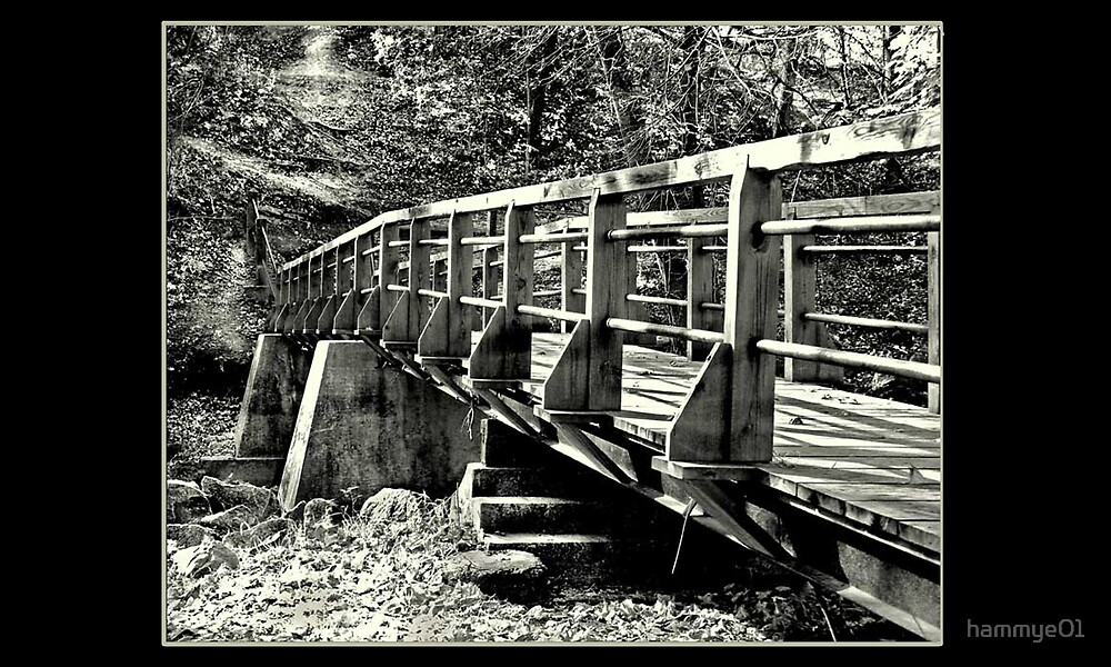 B&W Bridge by hammye01