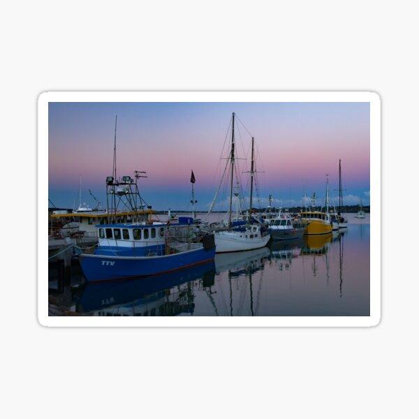 Amazing colours of St Helens, Tasmania Sticker