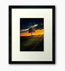 Beauty nature Framed Print