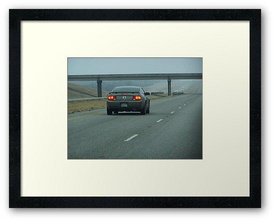 Speedy Mustang by rayrayshep