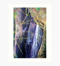 Falls at St Bernards Mt.Tamborine Art Print